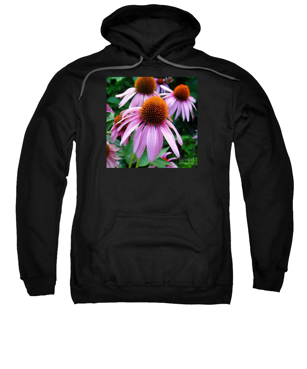 Coneflowers Sweatshirt featuring the photograph Three Coneflowers by Nancy Mueller