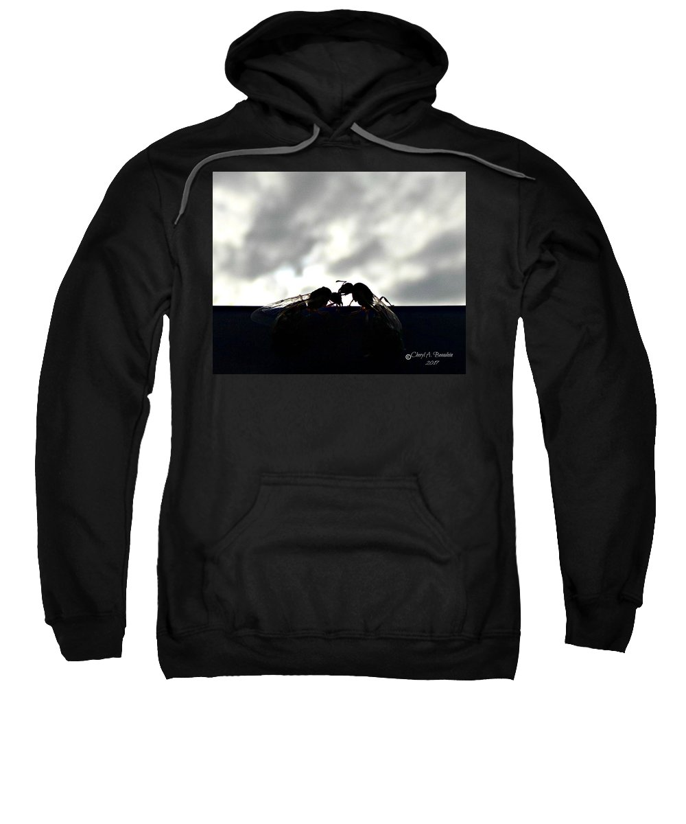 Ants Sweatshirt featuring the photograph Consider The Ants 3 Of 3 by Cheryl A Beaudoin