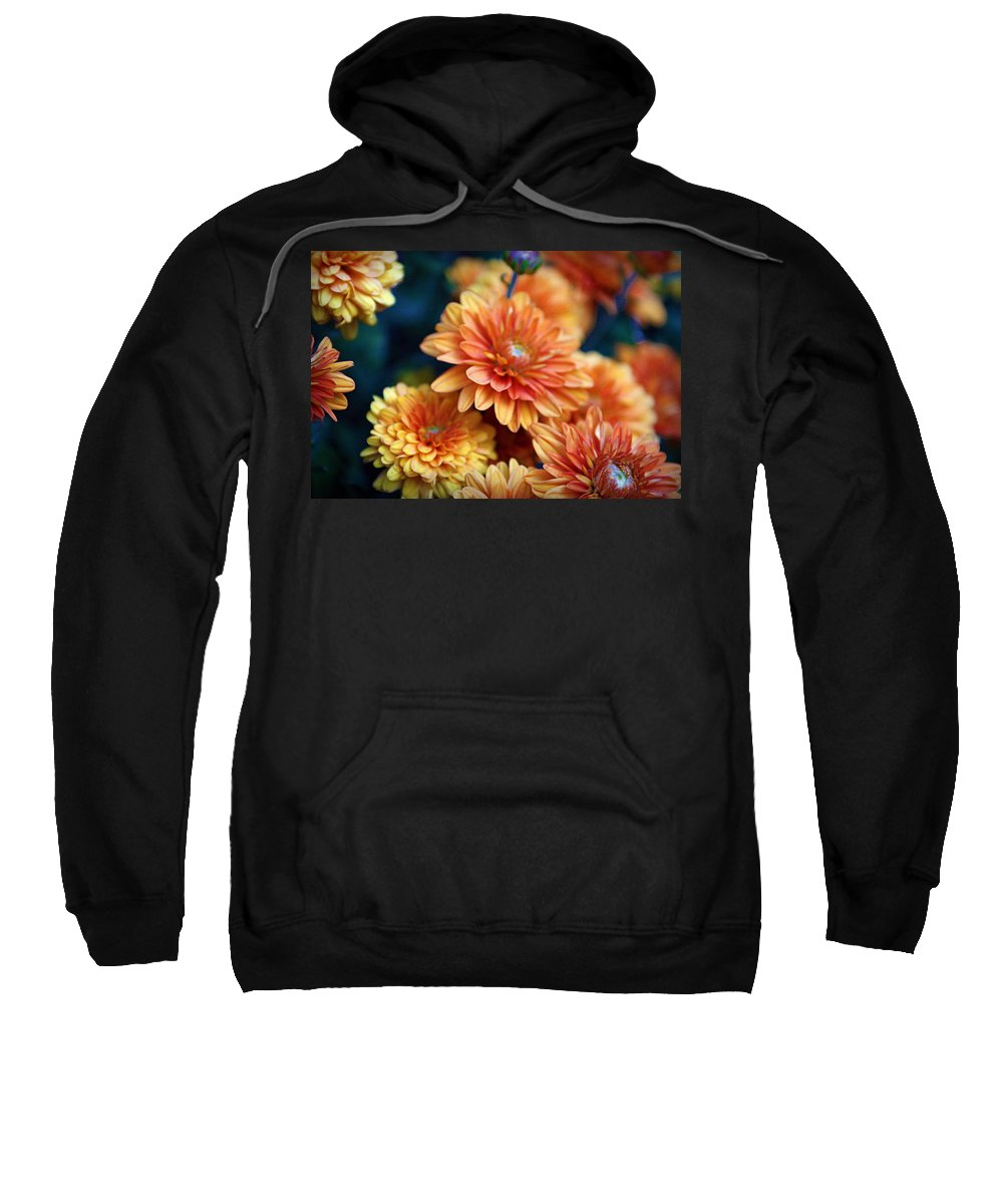 Flowers Sweatshirt featuring the photograph Copper Mums by Cricket Hackmann