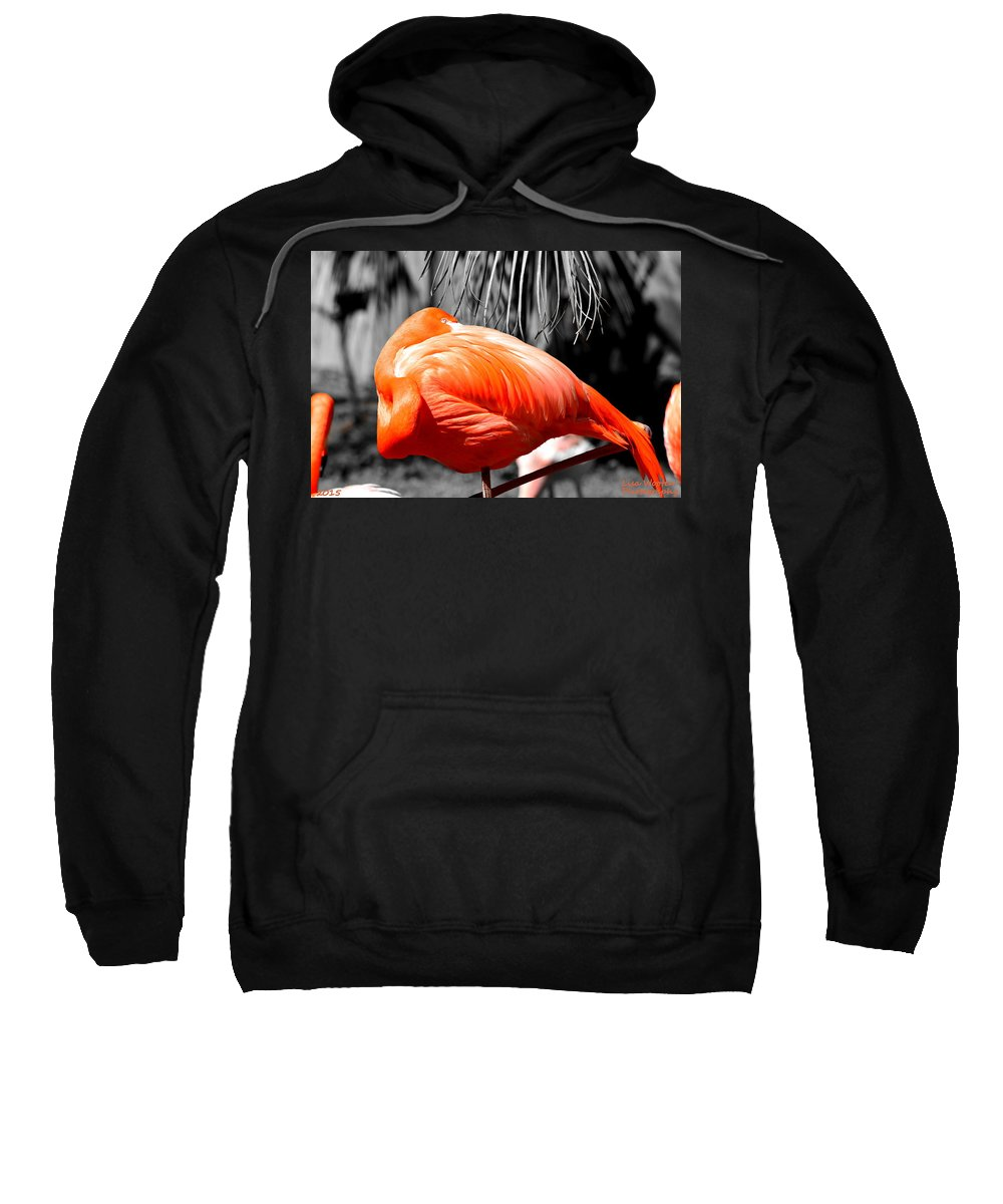 Coral Creation Sweatshirt featuring the photograph Coral Creation by Lisa Wooten