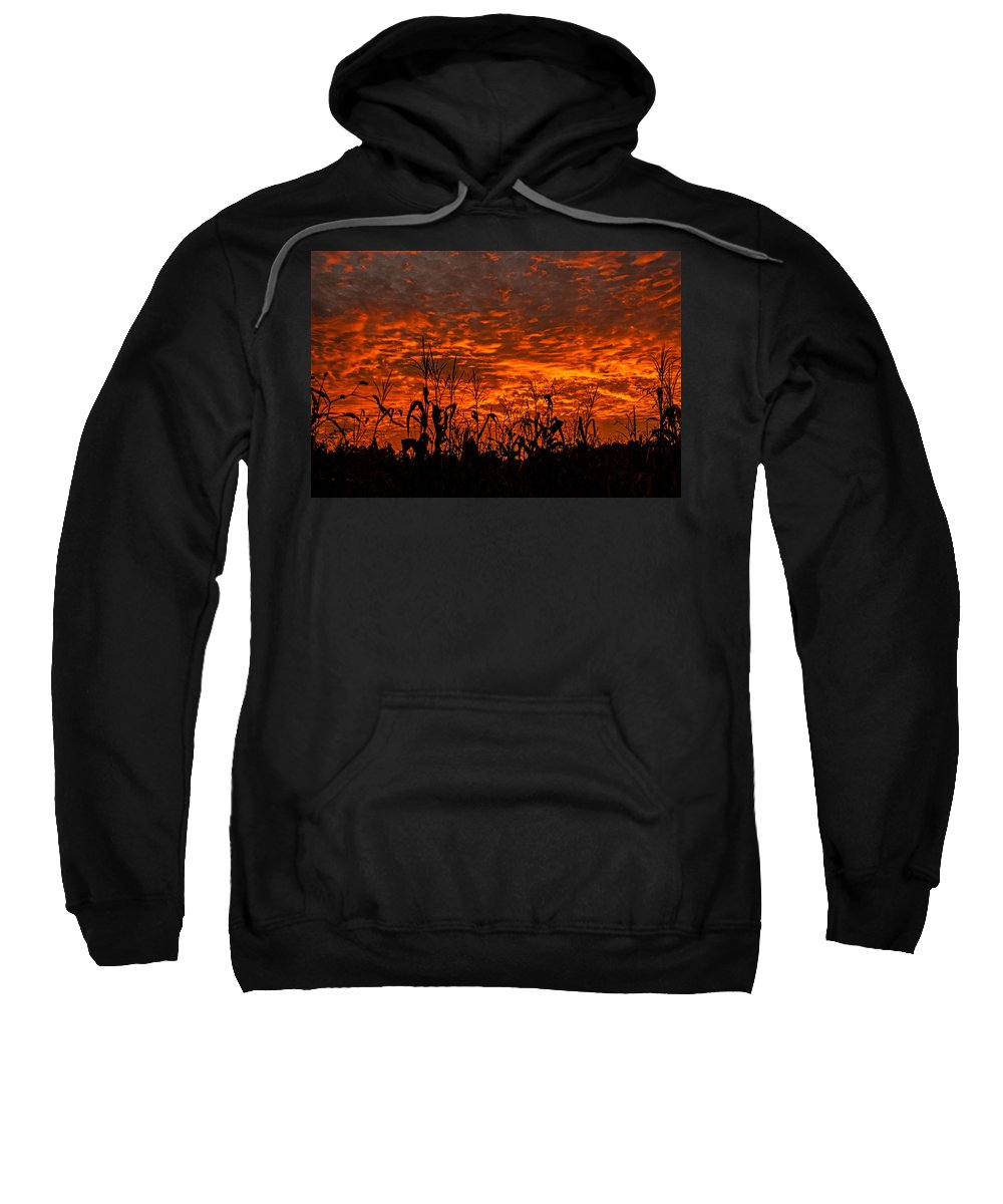 Corn Under A Fiery Sky Framed Prints Sweatshirt featuring the photograph Corn Under A Fiery Sky by John Harding