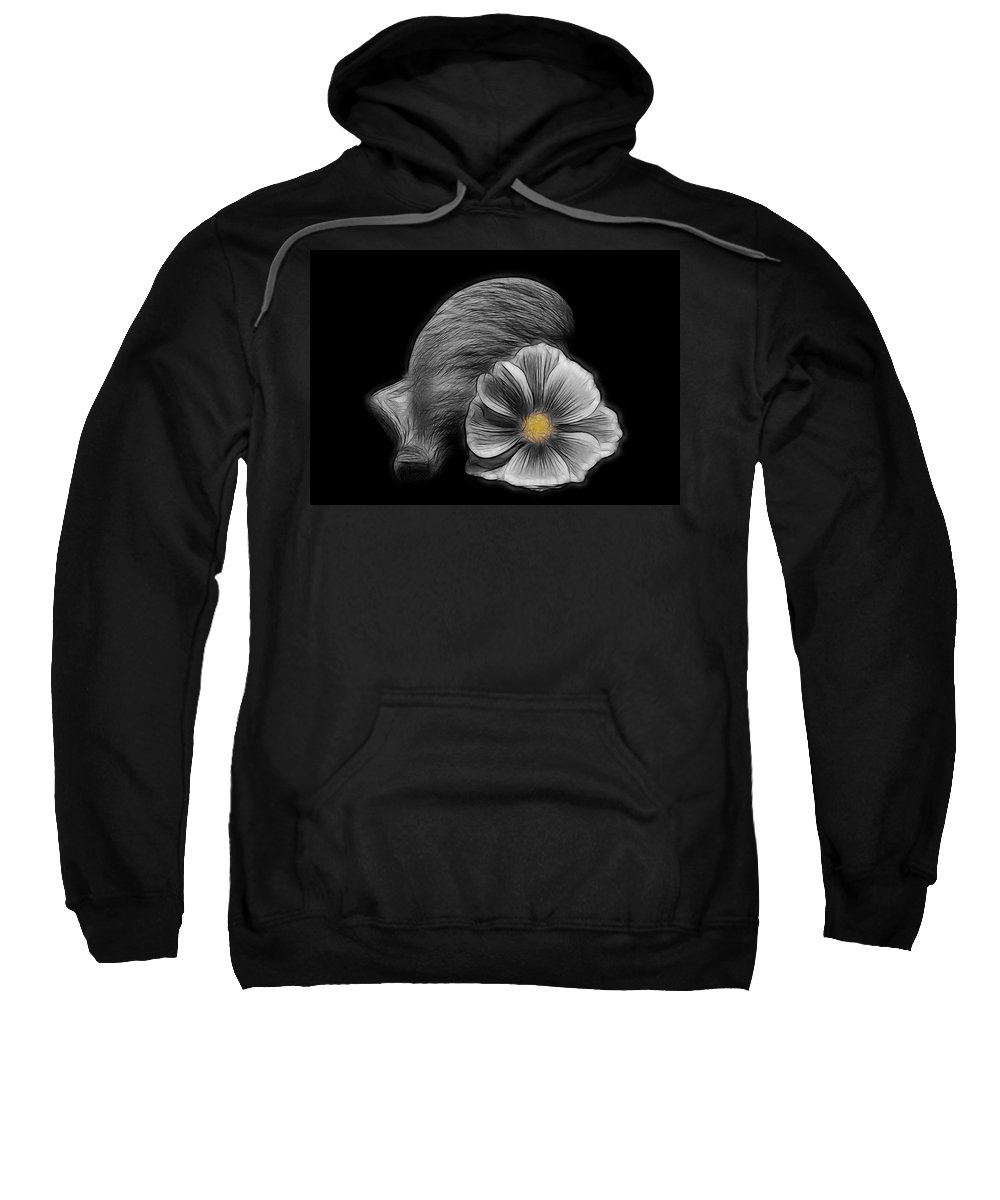 Cosmea Sweatshirt featuring the photograph Cosmea Bloom by Manfred Lutzius