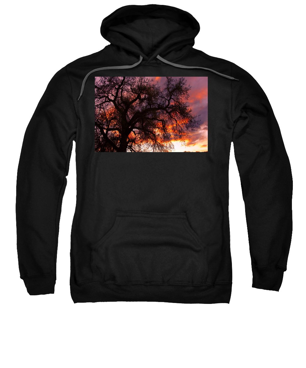 Silhouette Sweatshirt featuring the photograph Cottonwood Sunset Silhouette by James BO Insogna
