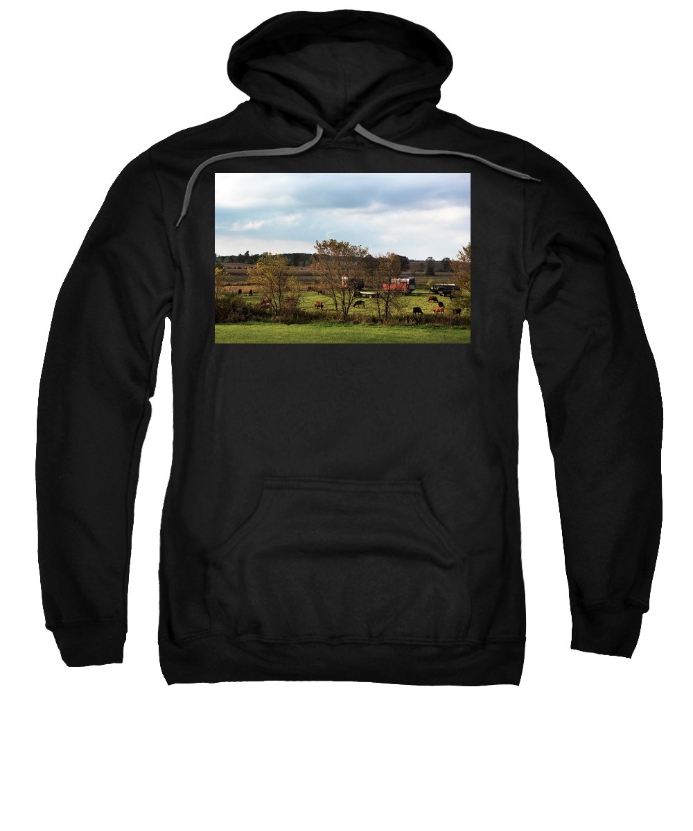Landscape Sweatshirt featuring the photograph Country Life by Jayne Gohr