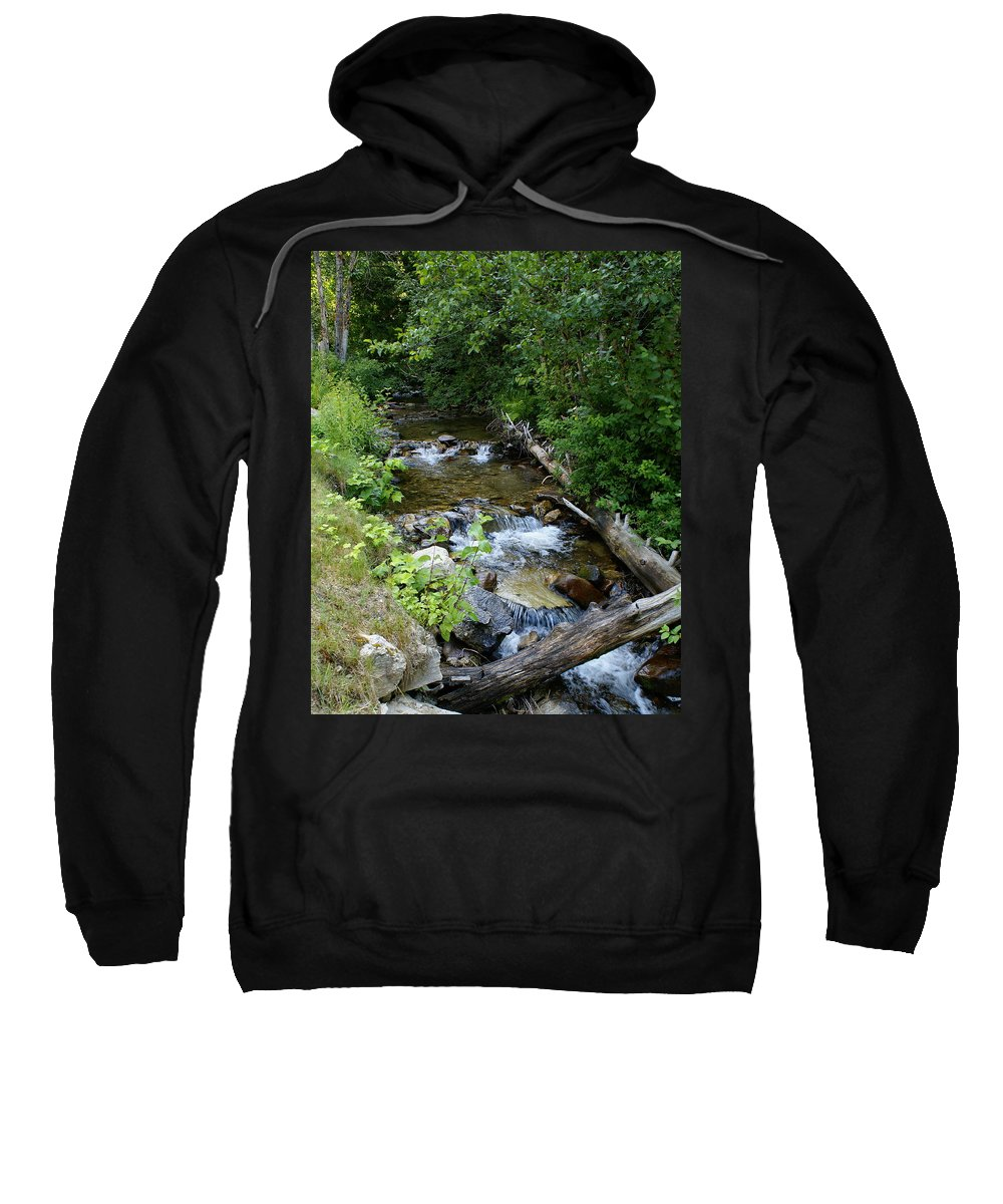 Nature Sweatshirt featuring the photograph Creek On Mt. Spokane 1 by Ben Upham III