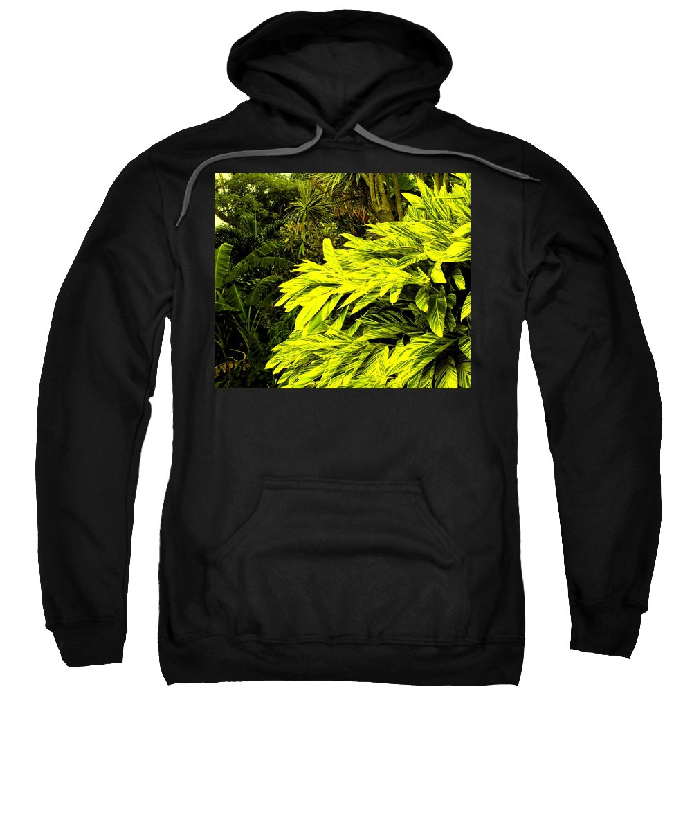 Croton Sweatshirt featuring the photograph Croton Cascading Down The Hillside by Ian MacDonald