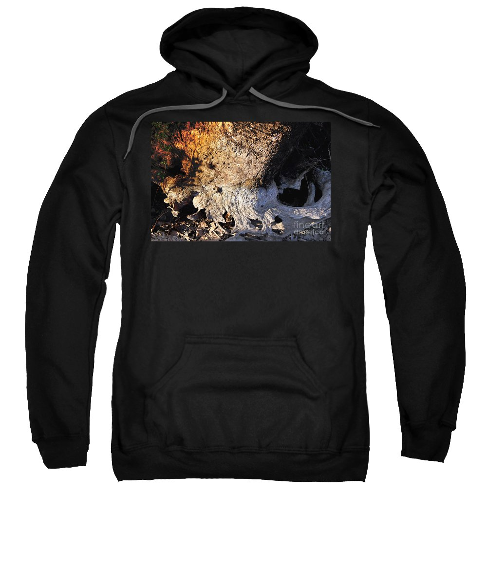 Abstract Sweatshirt featuring the photograph Curves And Colors In Nature by Todd Blanchard