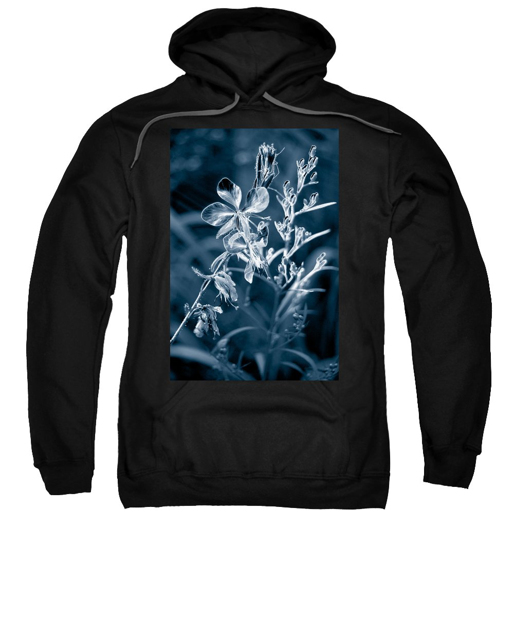 Cyanotype Sweatshirt featuring the photograph Cyanotype Morn by Trish Hale