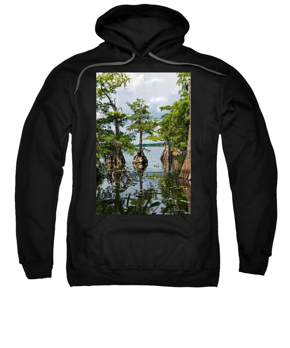 Trees Sweatshirt featuring the photograph Cypress Reflections by Christopher Holmes