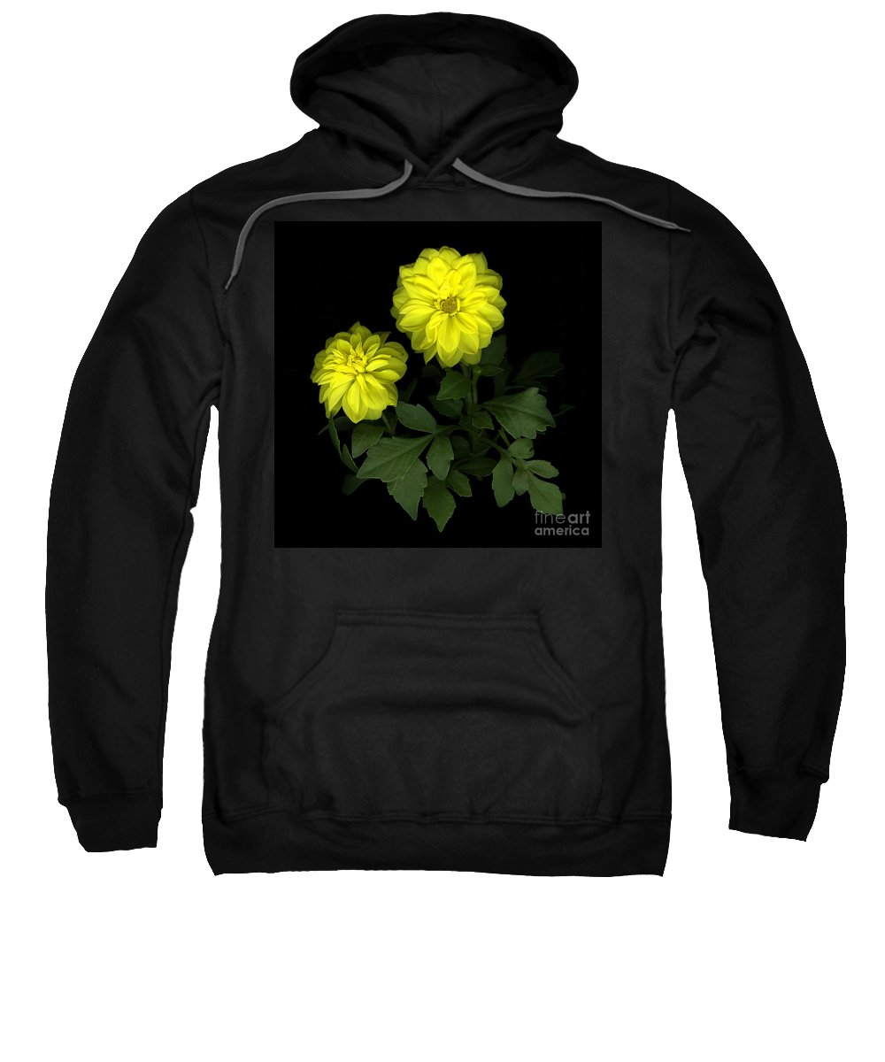 Yellow Sweatshirt featuring the photograph Dahlia by Christian Slanec