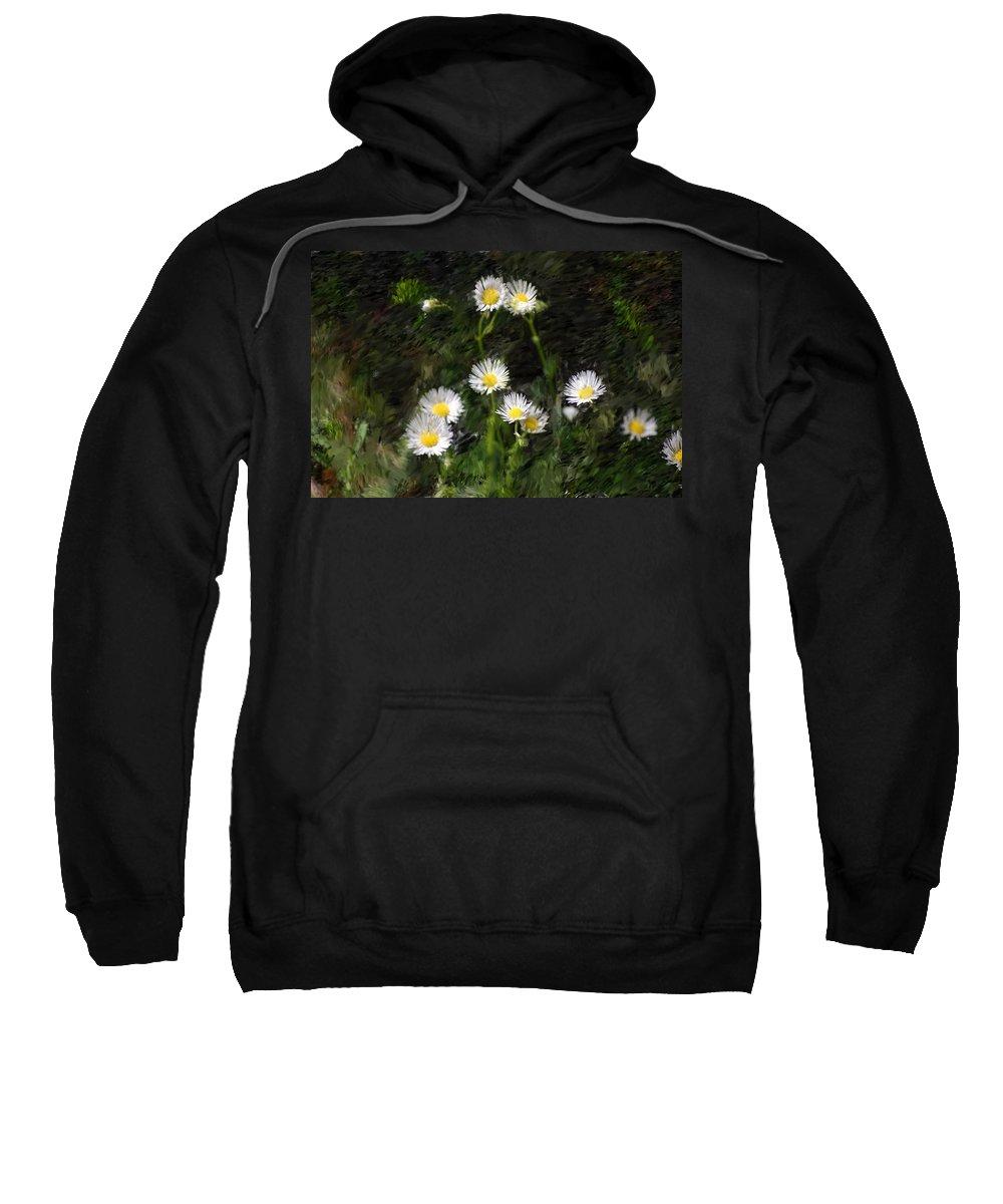 Digital Photograph Sweatshirt featuring the photograph Daisy Day Fantasy by David Lane