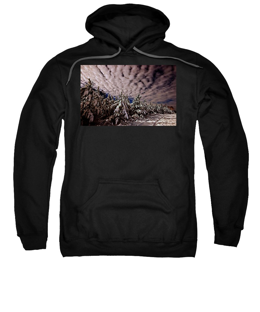 Dancing Trees Framed Prints Sweatshirt featuring the photograph Dancing Trees by John Harding