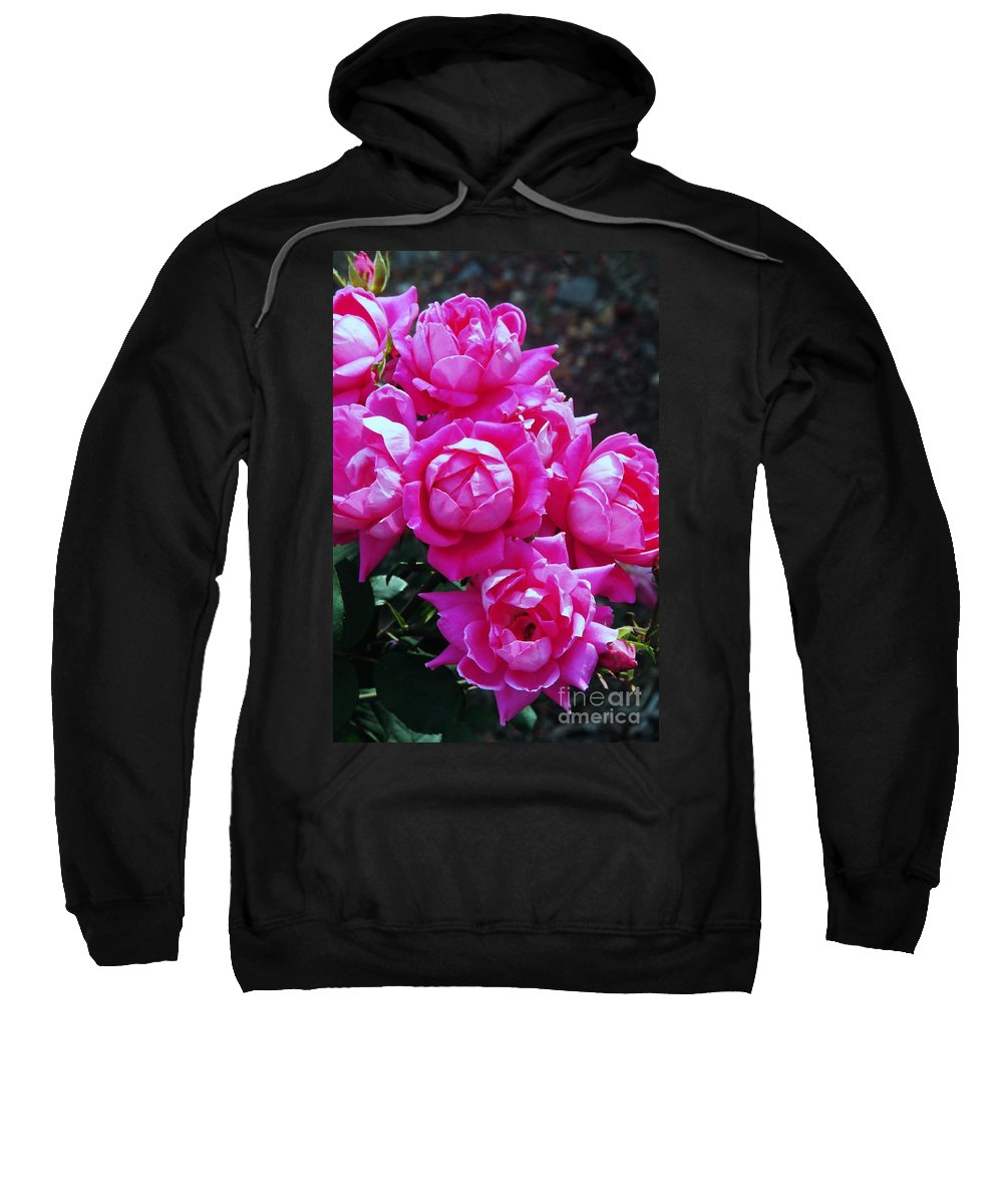 Rose Sweatshirt featuring the photograph Dark Pink Roses by Kathleen Struckle