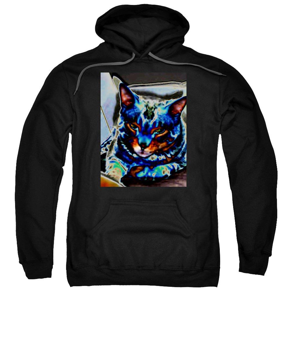 Cat Sweatshirt featuring the photograph Day Dreamer by Dawn Johansen