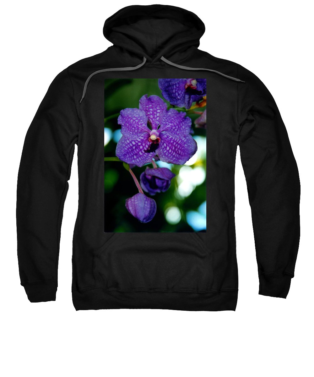 Orchid Sweatshirt featuring the photograph Deep Blue Orchid by Susanne Van Hulst
