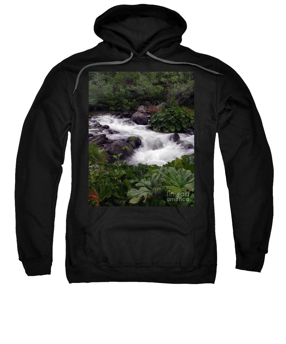 Creek Sweatshirt featuring the photograph Deer Creek 07 by Peter Piatt