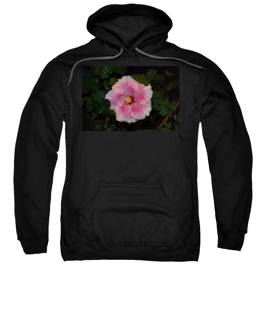 Flower Sweatshirt featuring the photograph Delicate Pink Flower by Alice Markham