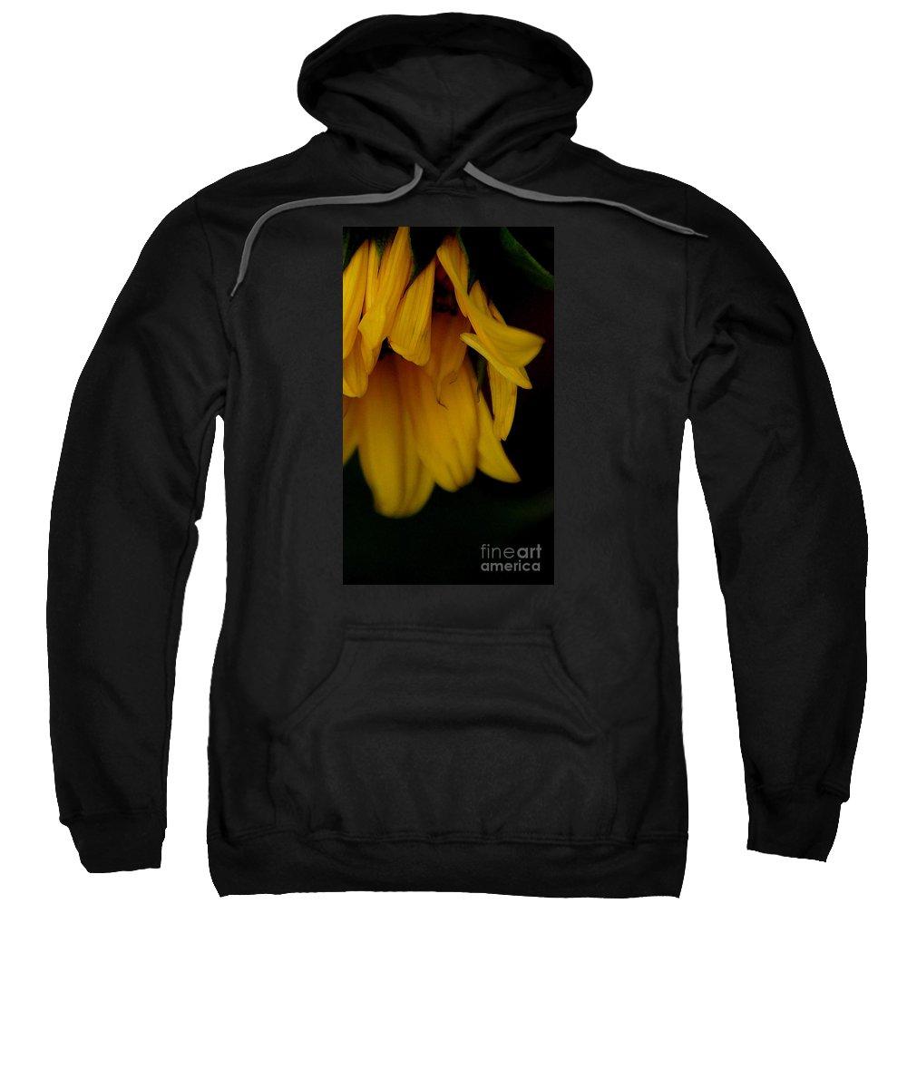 Sunflower Sweatshirt featuring the photograph Demure by Linda Shafer