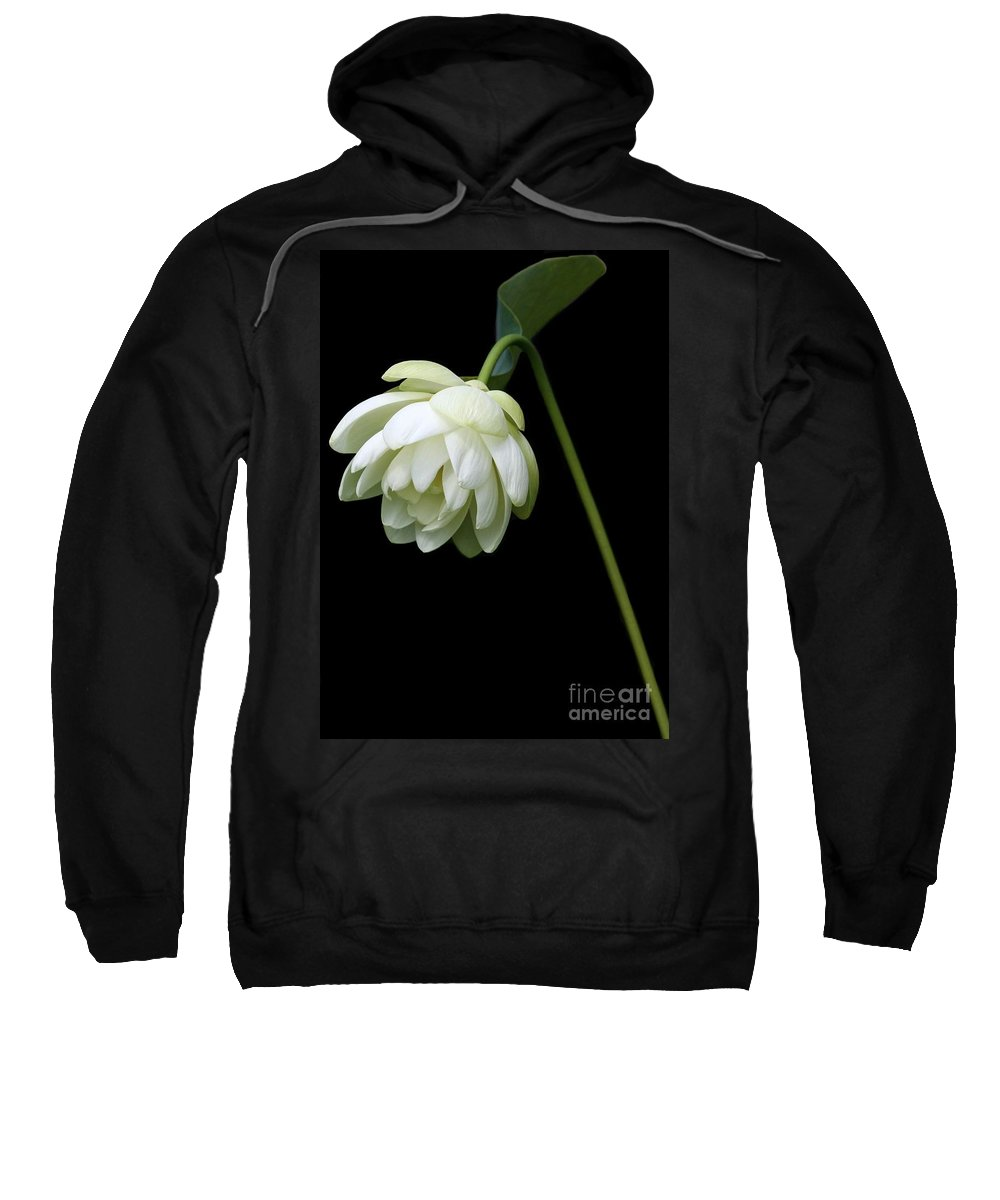 Lotus Sweatshirt featuring the photograph Demure by Sabrina L Ryan