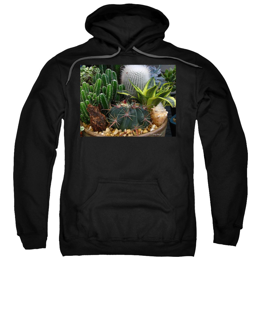Art For The Wall...patzer Photography Sweatshirt featuring the photograph Desert Art by Greg Patzer