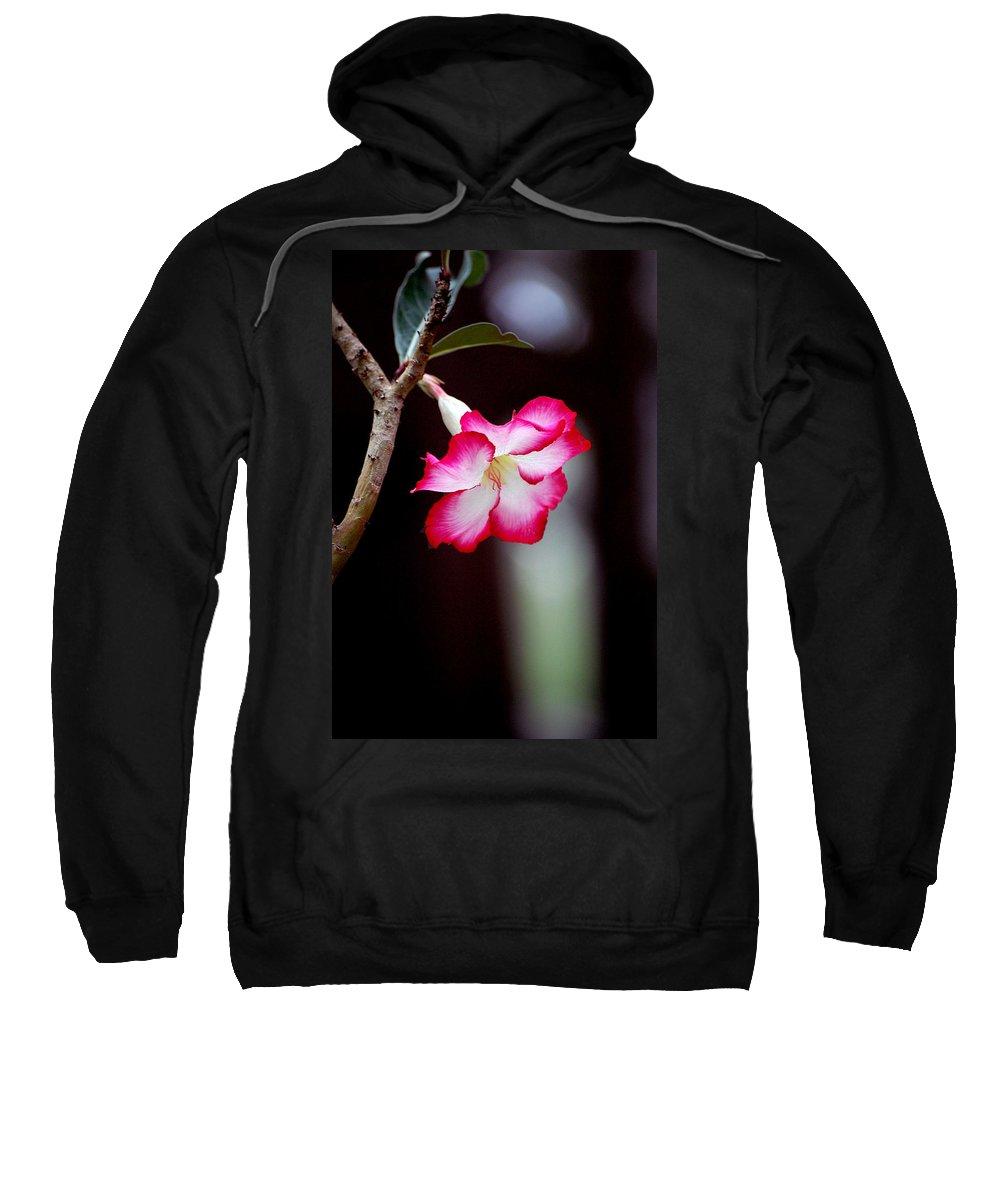 Flower Sweatshirt featuring the photograph Desert Flower by Robert Meanor