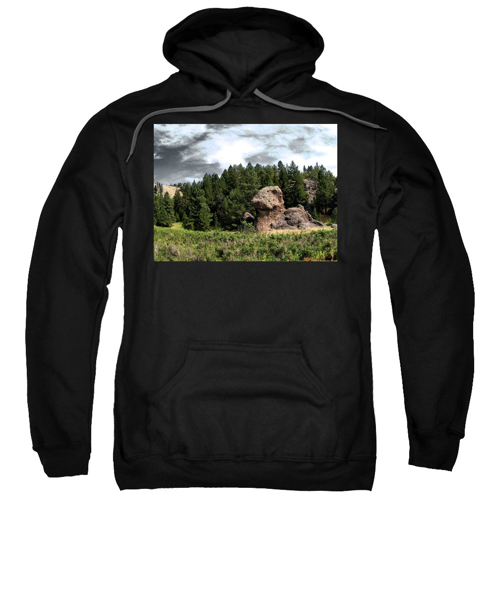 Dinosaurs Sweatshirt featuring the photograph Dino Land Of The Lost by Susan Kinney