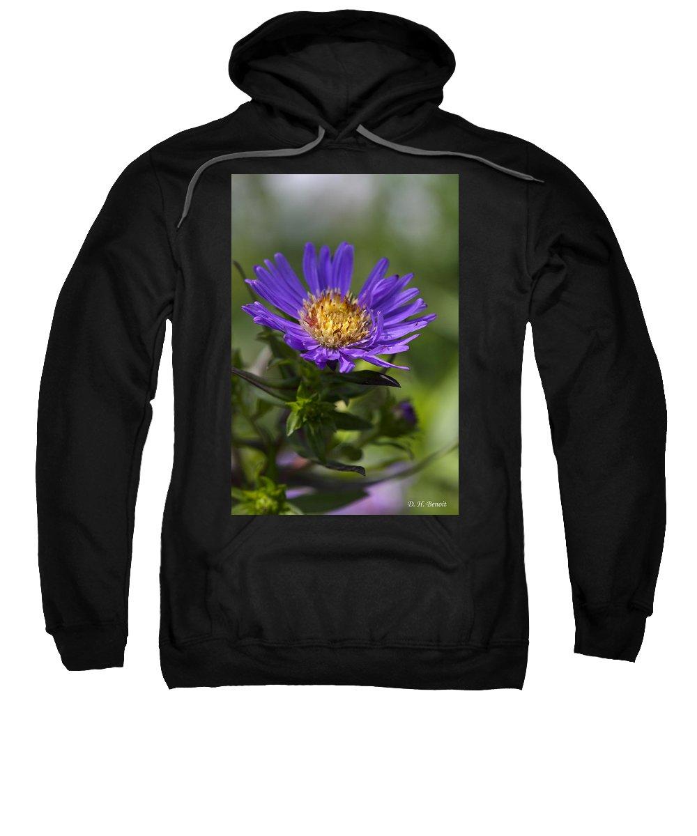 Flower Sweatshirt featuring the photograph Display Of Softness by Deborah Benoit