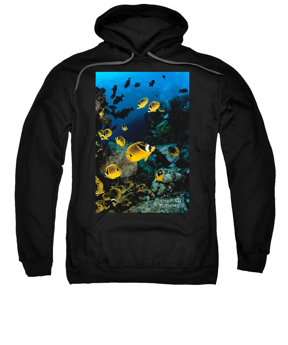 Animal Art Sweatshirt featuring the photograph Diver And Butterflyfish by Dave Fleetham - Printscapes