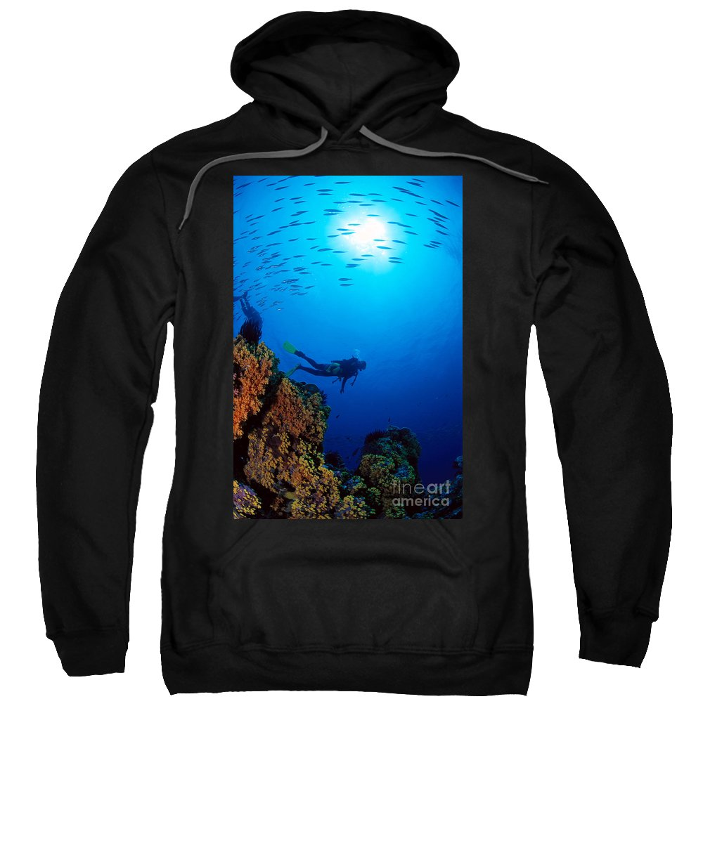 Bubble Sweatshirt featuring the photograph Diving Scene by Ed Robinson - Printscapes