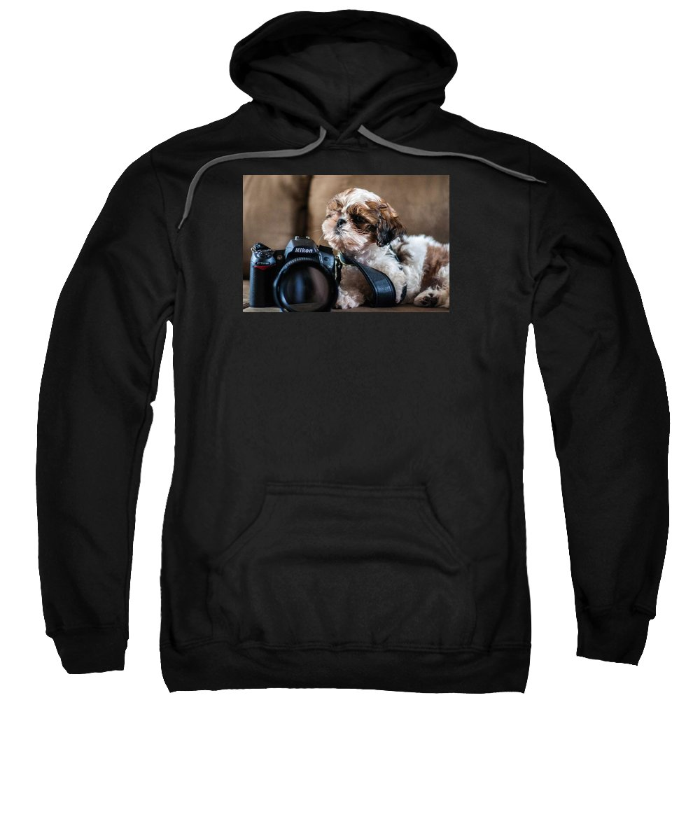 Book Sweatshirt featuring the photograph Dog 2 by Rossana Magri