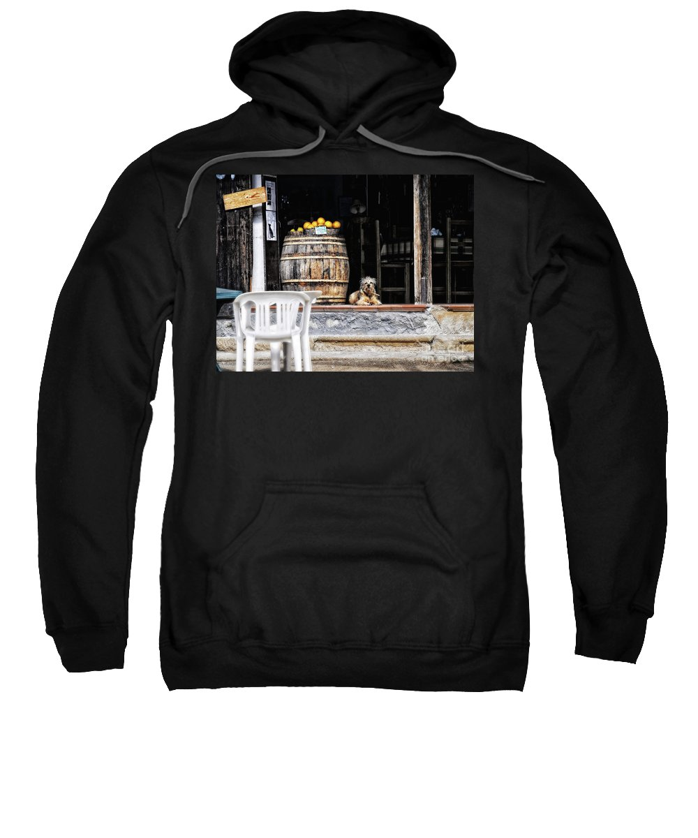 Dog Sweatshirt featuring the photograph Dog Tavern With Oranges by Silvia Ganora