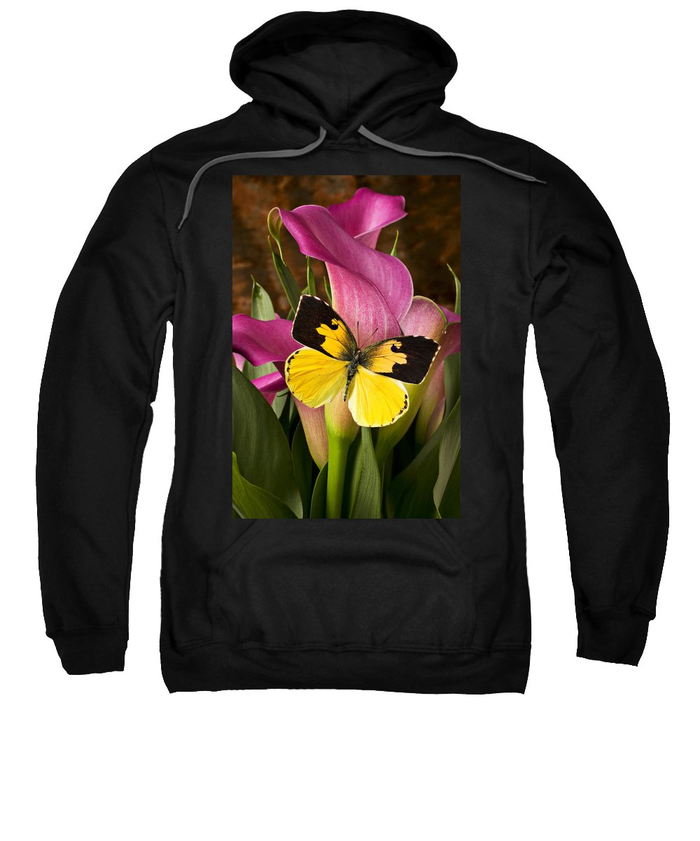 Butterfly Sweatshirt featuring the photograph Dogface Butterfly On Pink Calla Lily by Garry Gay