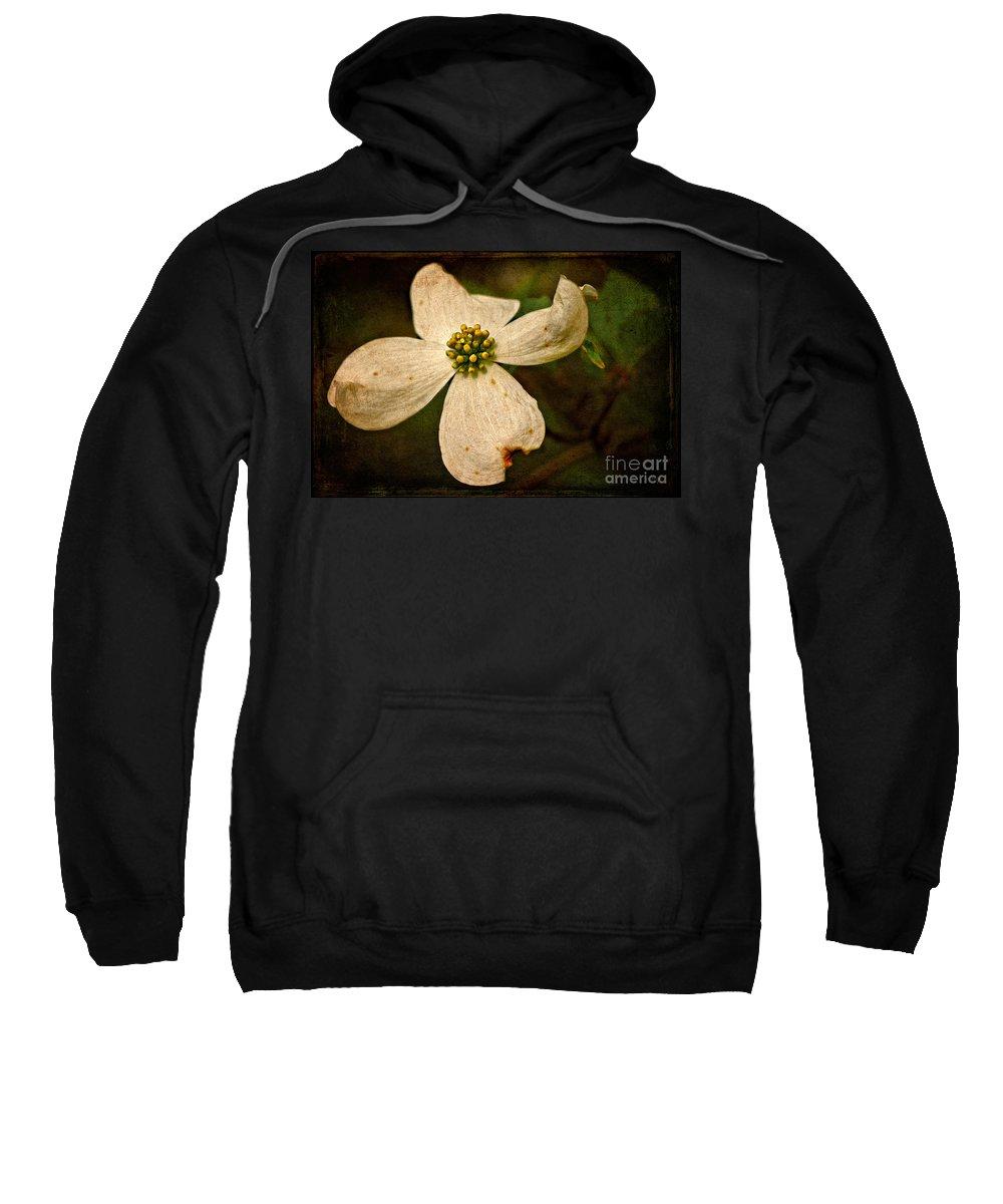 Dogwood Sweatshirt featuring the photograph Dogwood by Lois Bryan