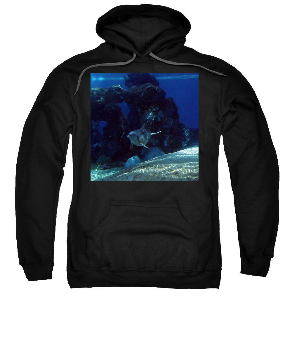 Dolphin Fish Aquatic Life Water Aquarium Sea Sandy Shore Rock Reef Sweatshirt featuring the photograph Dolphin by Andrea Lawrence
