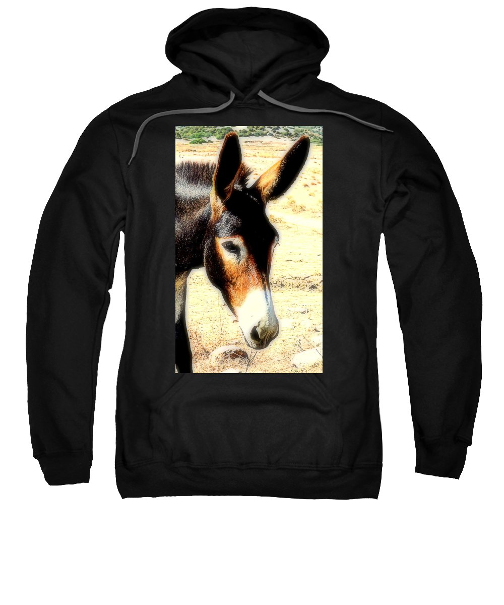 Donkey Sweatshirt featuring the photograph A Donkey Doesn't Need A Rider To Be Happy  by Hilde Widerberg