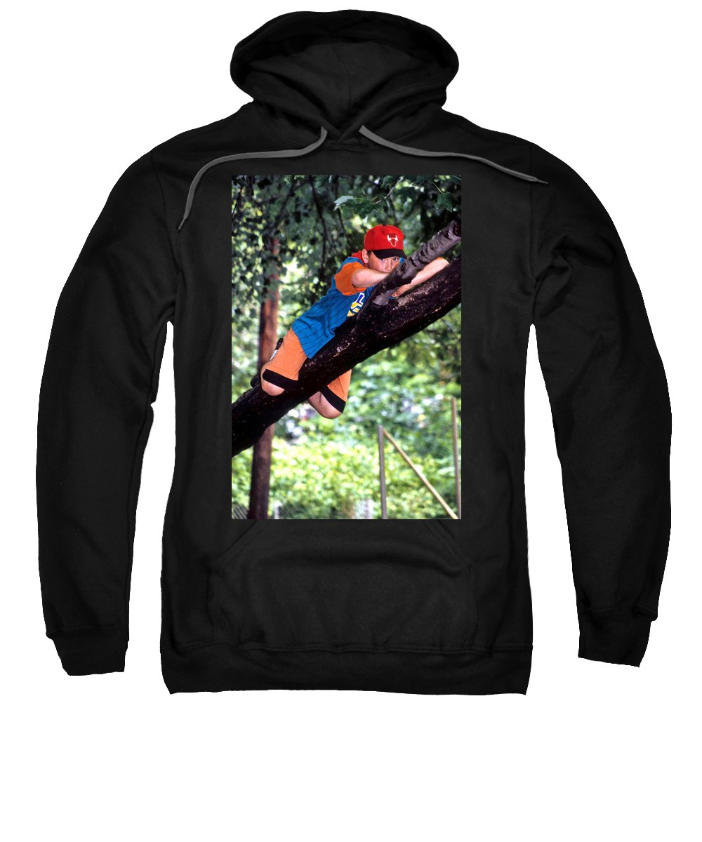 Boy Climbing Tree Sweatshirt featuring the photograph Don't Forget To Dream by Laurie Paci