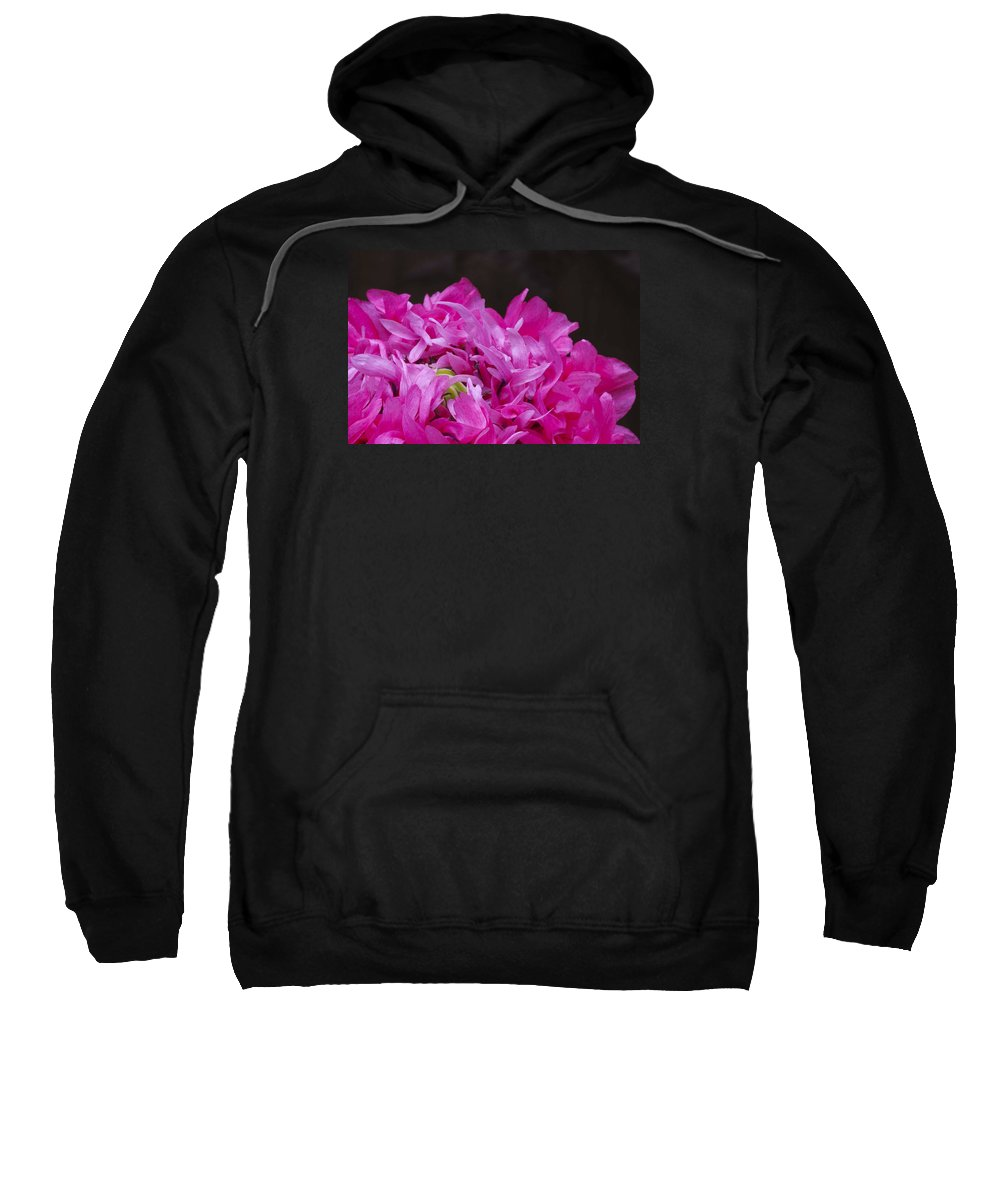 Bloom Sweatshirt featuring the photograph Double Poppy by Linda Cooke