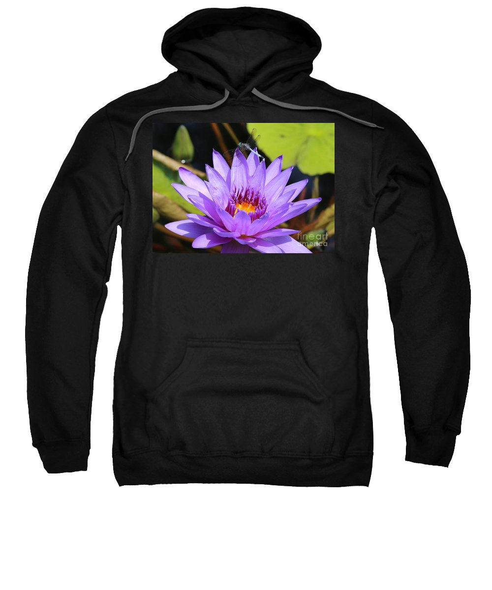Dragonfly Sweatshirt featuring the photograph Dragonfly On Water Lily by Carol Groenen