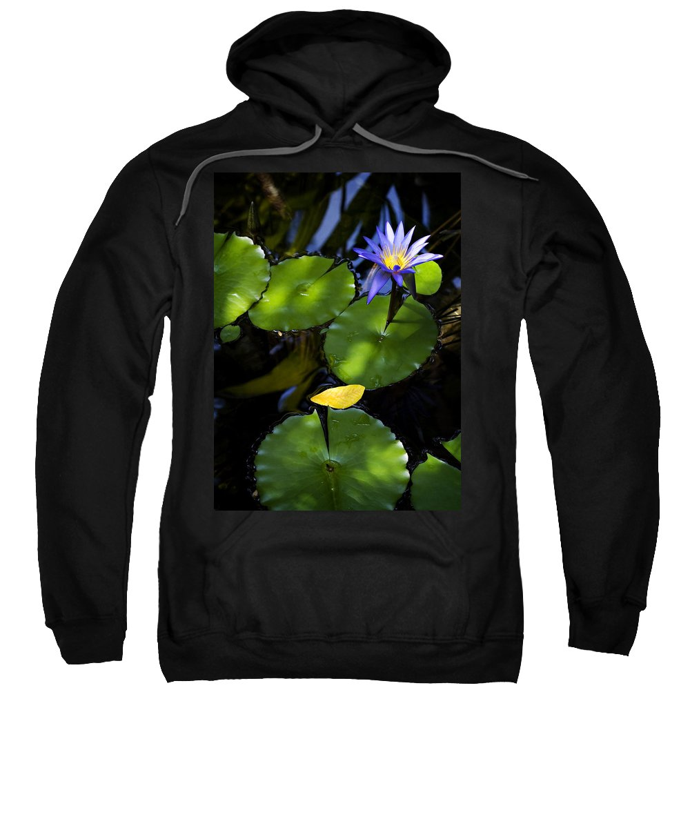 Lotus Sweatshirt featuring the photograph Dreamy Lotus by Marilyn Hunt