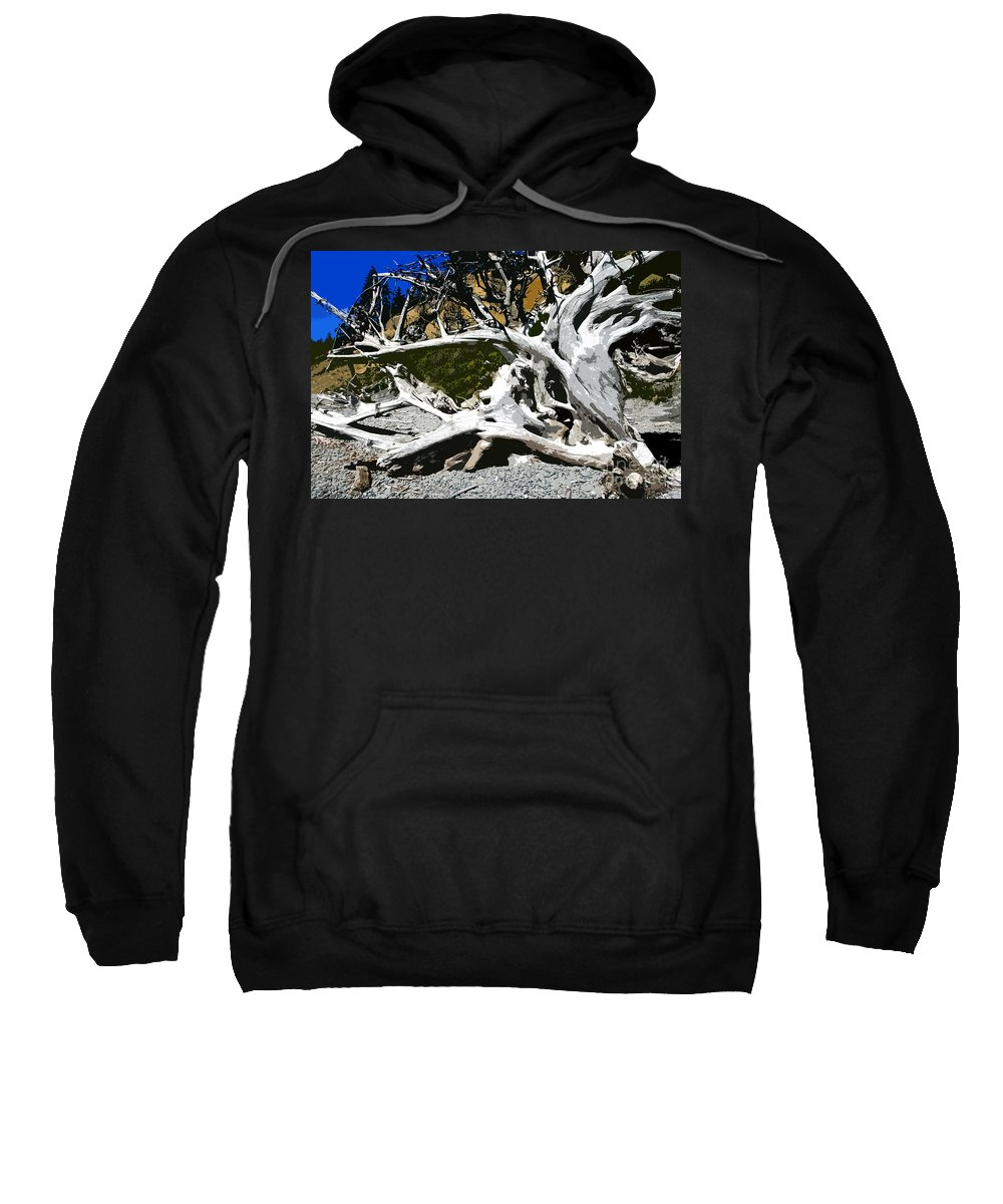Drift Wood Sweatshirt featuring the painting Drift Wood by David Lee Thompson