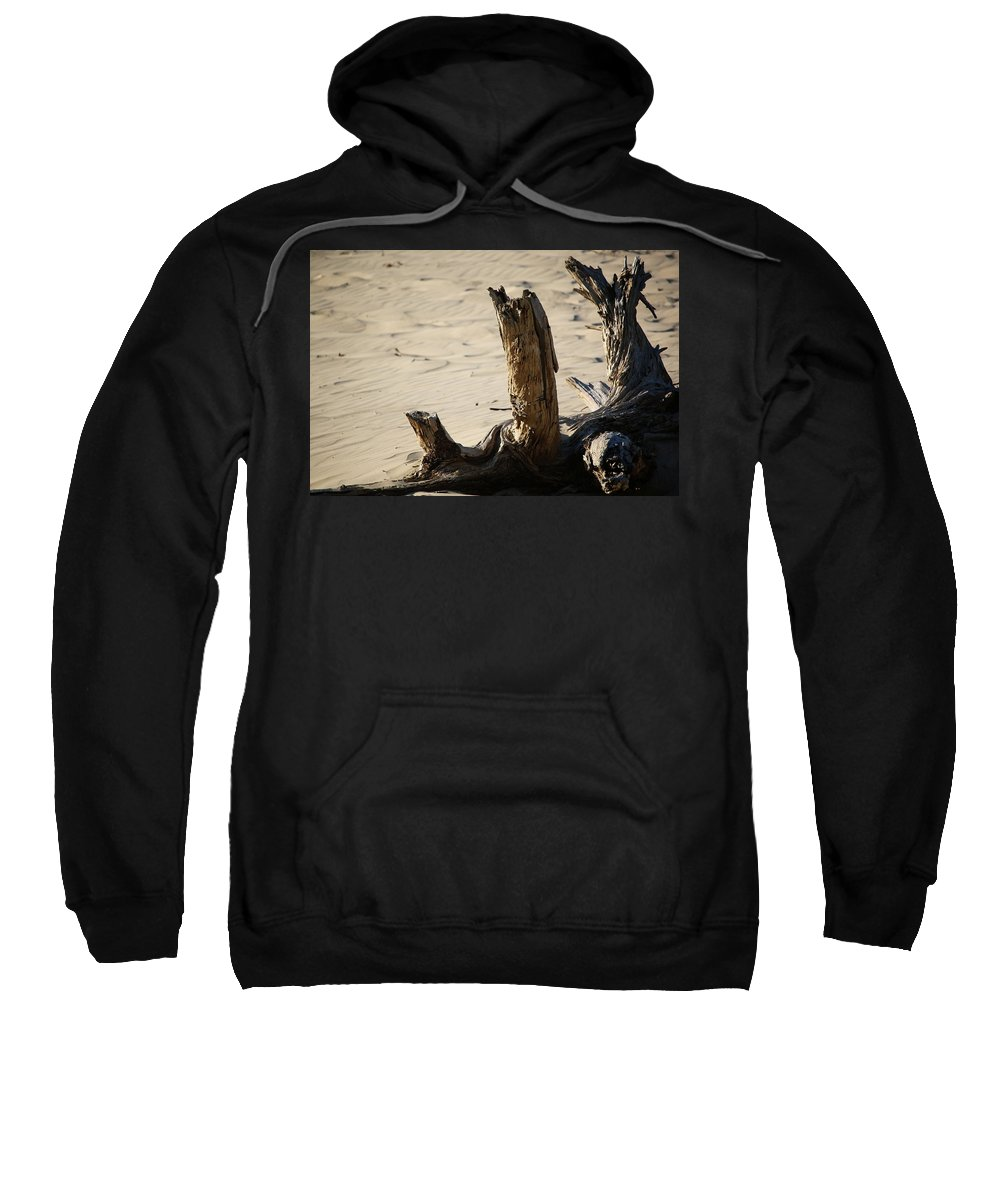 Sweatshirt featuring the photograph Driftwood by Crooked Cat Art and Photography
