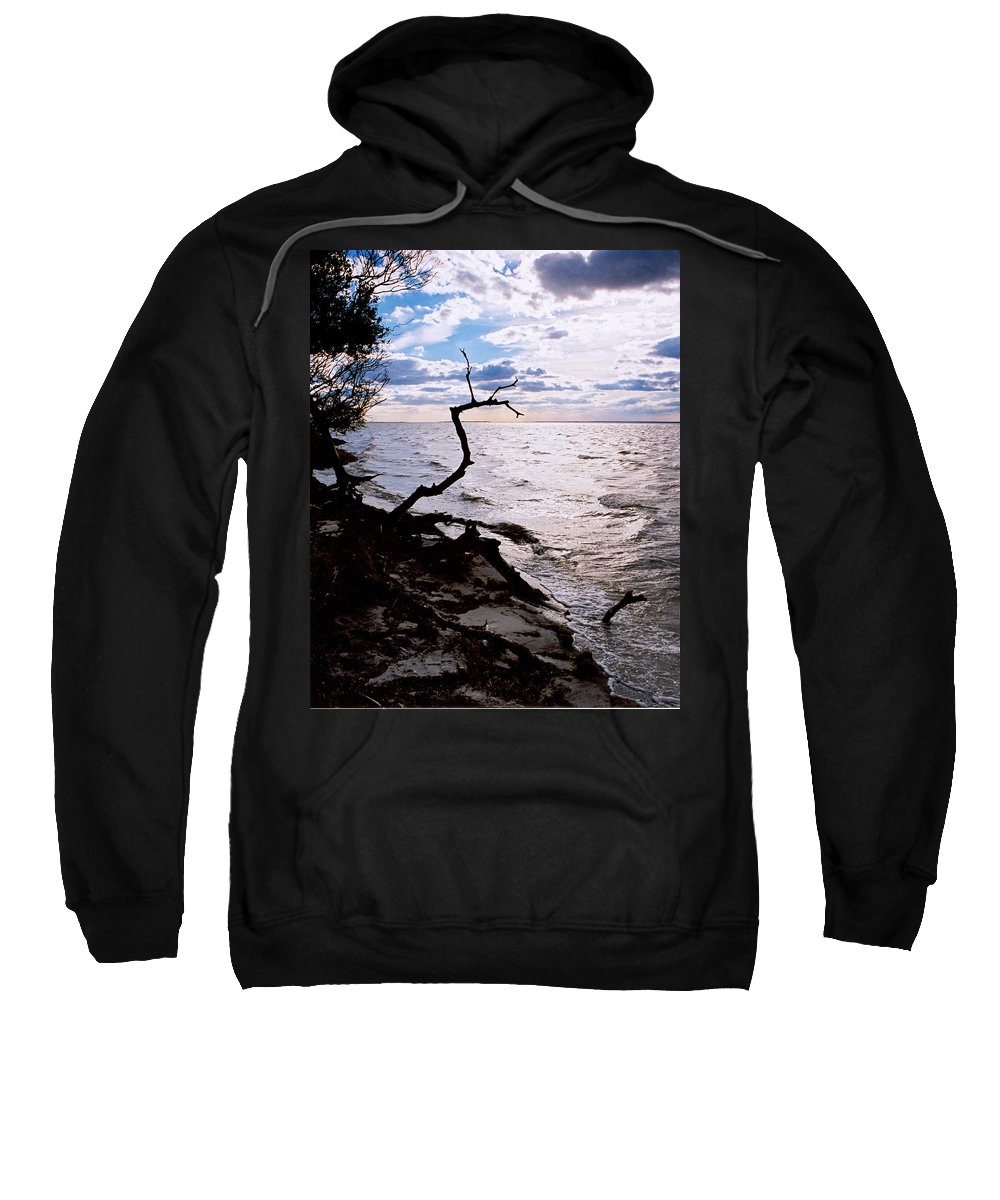 Barnegat Sweatshirt featuring the photograph Driftwood Dragon-barnegat Bay by Steve Karol