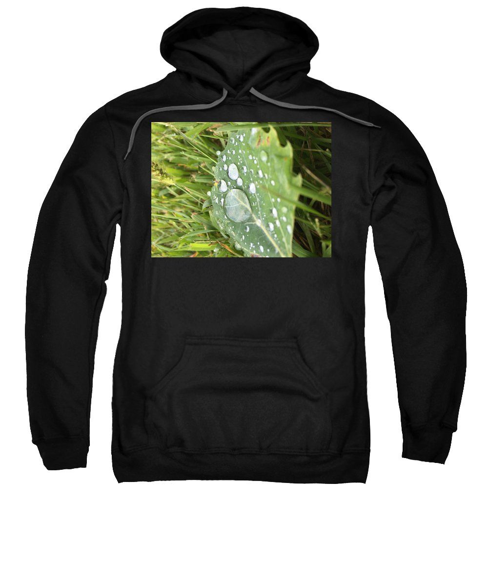 Leaf Sweatshirt featuring the photograph Droplet by Nicole Prohaska