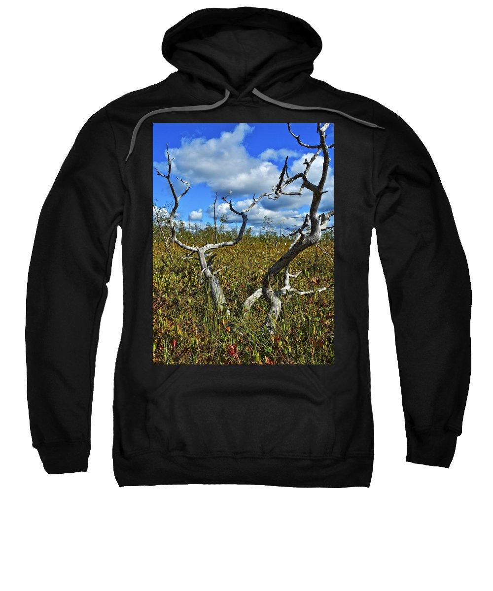 Attractive Sweatshirt featuring the photograph Dry Tree by Vadzim Kandratsenkau