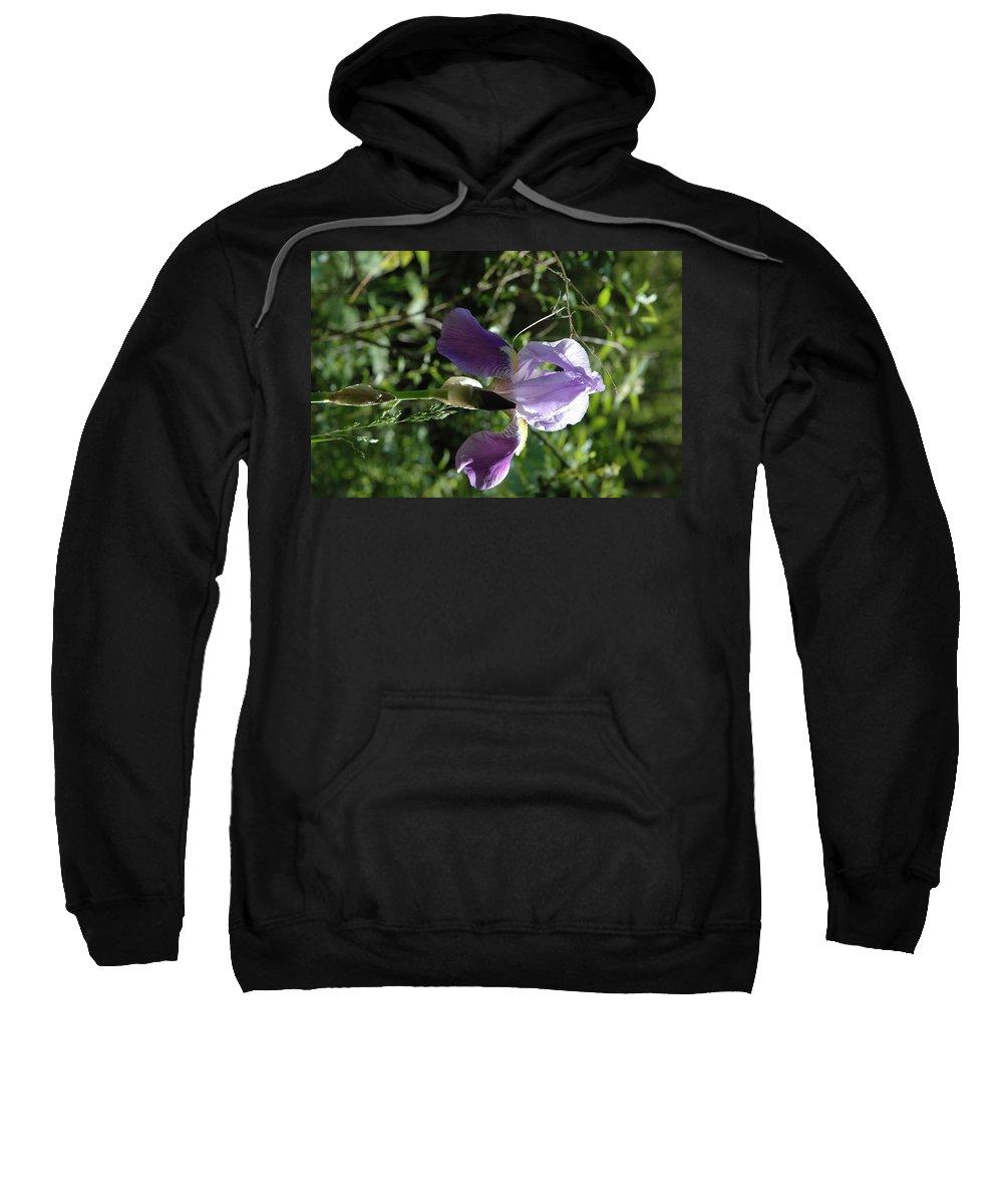 Usa Sweatshirt featuring the photograph Dwarf Lake Iris by LeeAnn McLaneGoetz McLaneGoetzStudioLLCcom