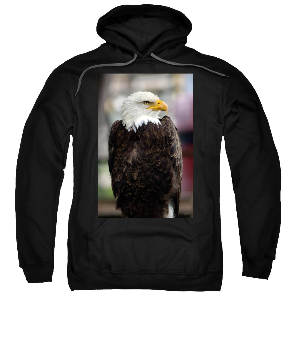 Eagle Sweatshirt featuring the photograph Eagle by Doug Gibbons