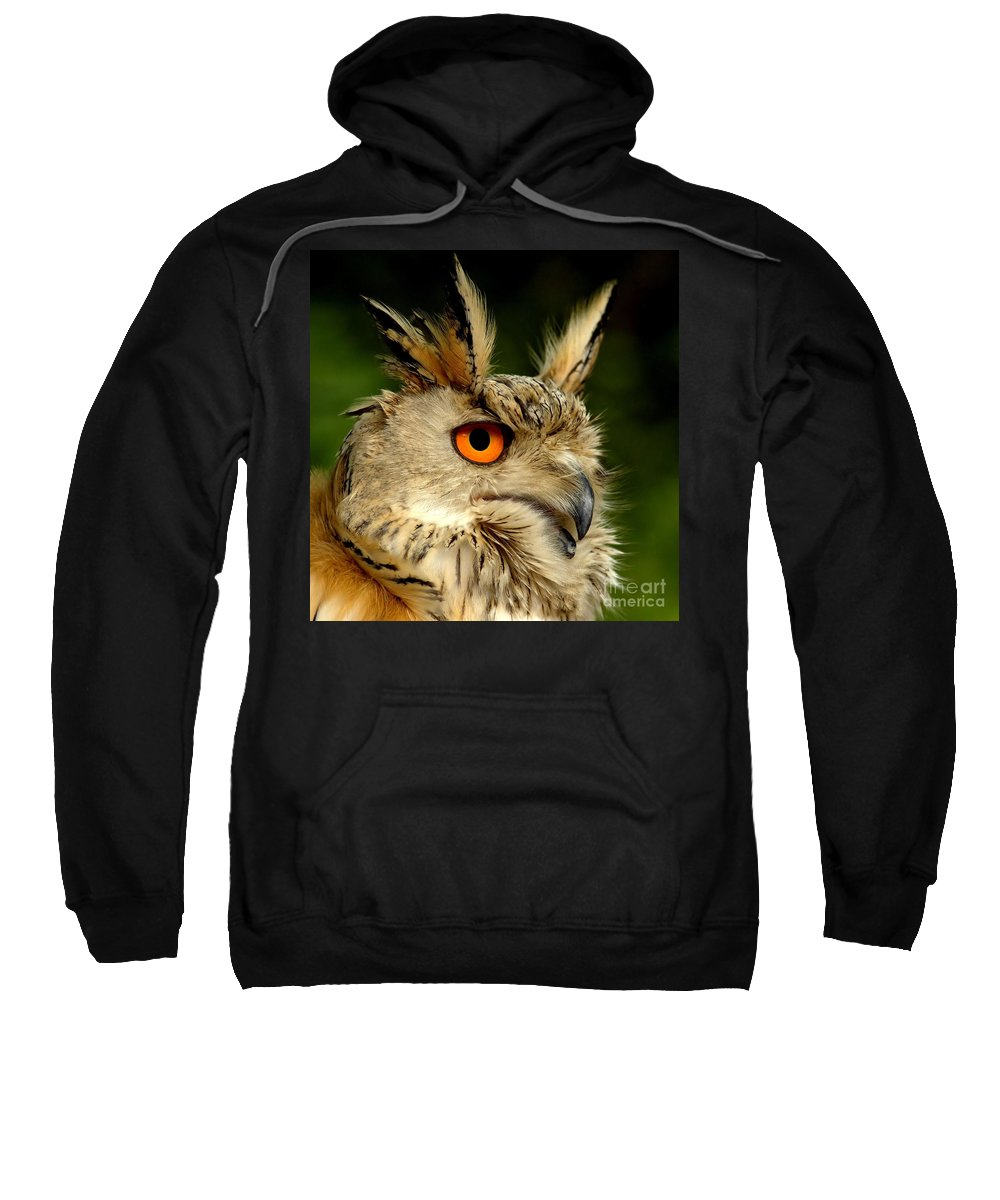Wildlife Sweatshirt featuring the photograph Eagle Owl by Jacky Gerritsen