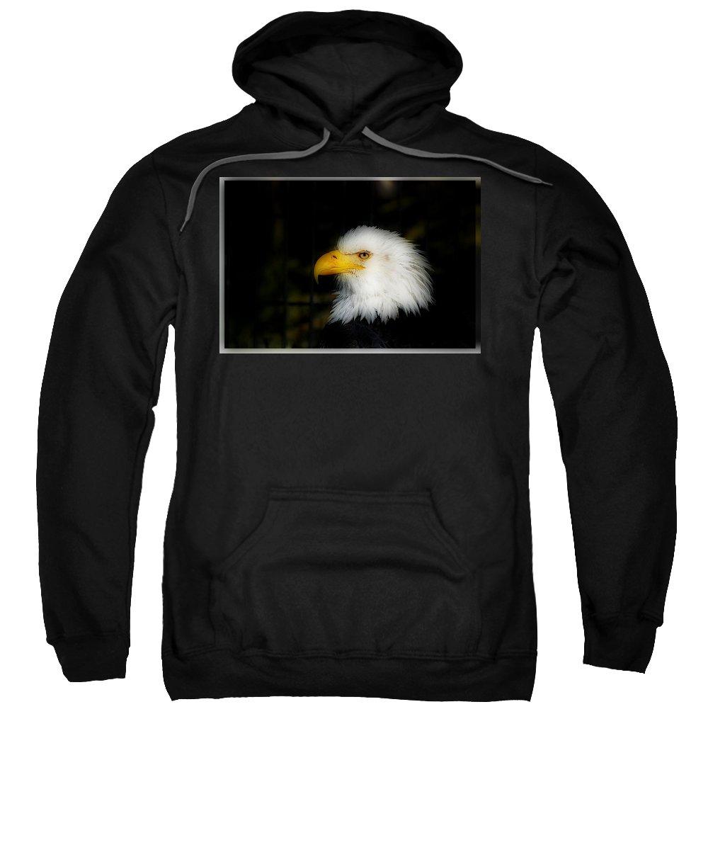 Eagle Sweatshirt featuring the photograph Eagle by Galeria Trompiz