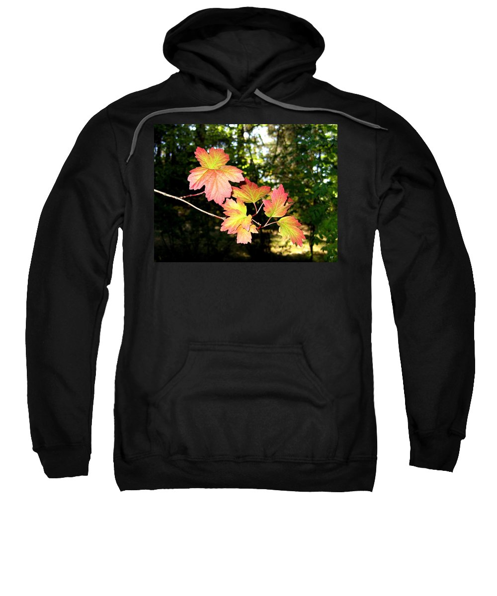 Autumn Sweatshirt featuring the photograph Early Days Of Autumn by Will Borden
