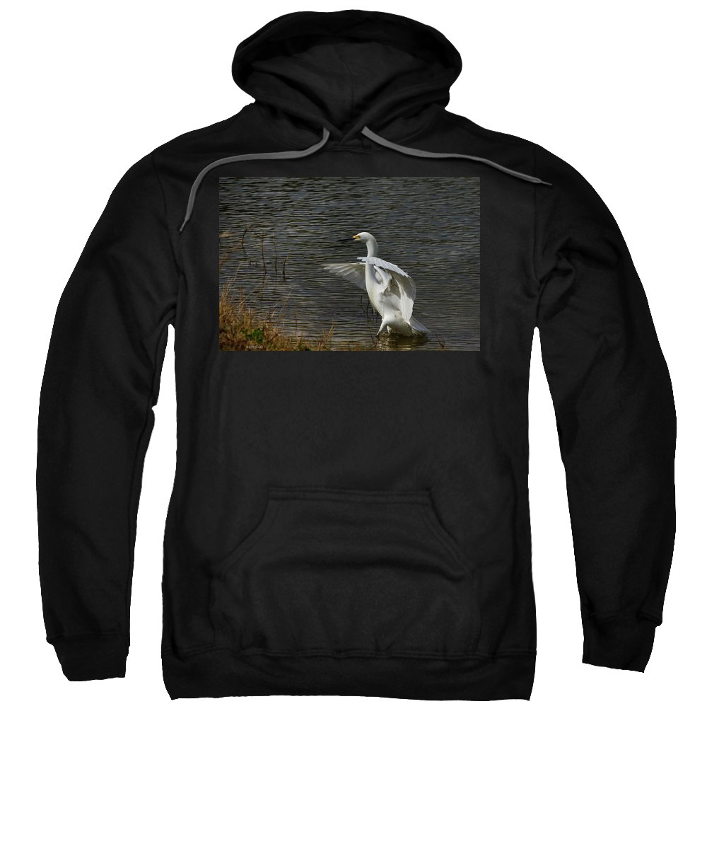 Giant Egret Sweatshirt featuring the photograph Egret Dance by Deborah Benoit